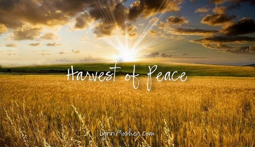 Harvest-of-peace-2c