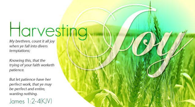 harvesting joy