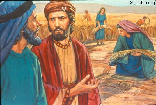 www-st-takla-org-bible-slides-ruth-695